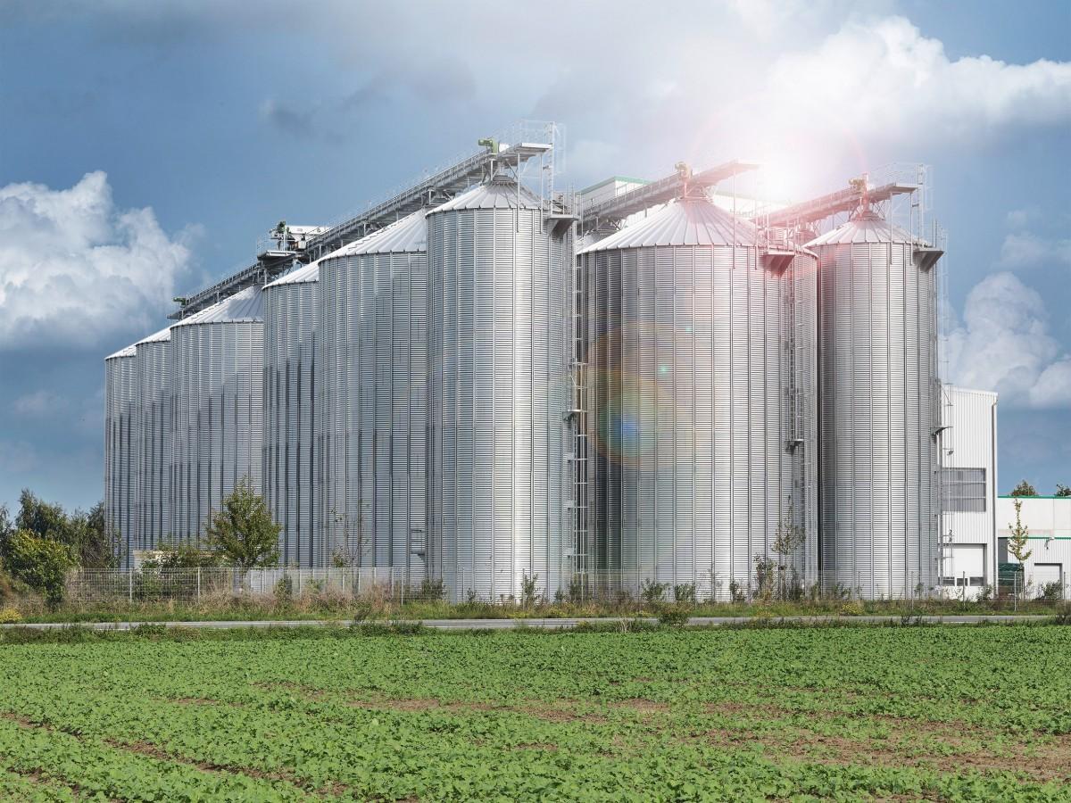 DP_Börde_Agrarhandel_Südseite